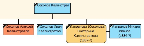 Дерево Соколовых по венчанию Екатерины